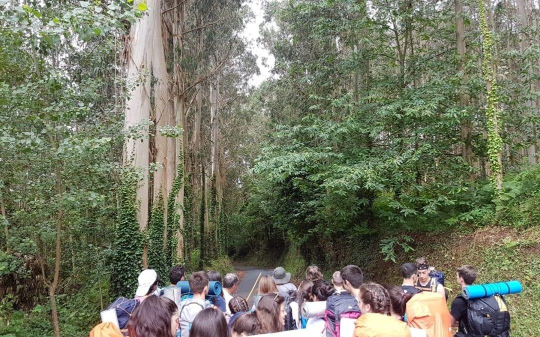Experiencias del Camino de Santiago 2018